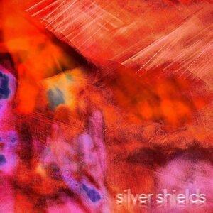 Silver Shields