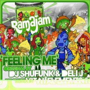 DJ Shufunk, Deli J 歌手頭像