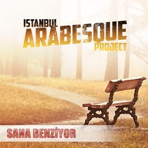 İstanbul Arabesque Project 歌手頭像