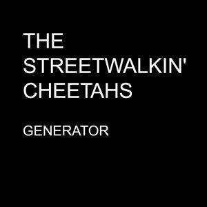 The Streetwalkin' Cheetahs 歌手頭像