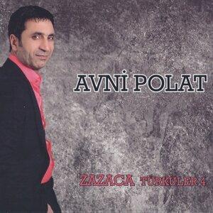 Avni Polat 歌手頭像