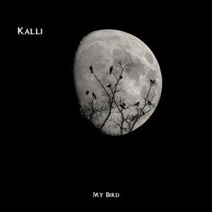 Kalli 歌手頭像