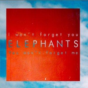 Elephants 歌手頭像