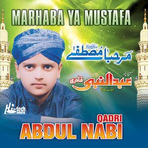 Abdul Nabi Qadri 歌手頭像