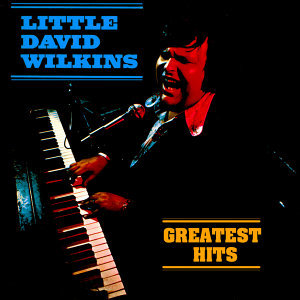Little David Wilkins 歌手頭像