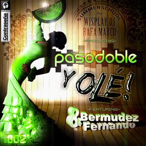 Bermudez, Fernando 歌手頭像