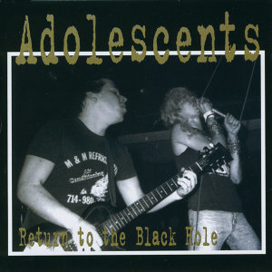 The Adolescents 歌手頭像