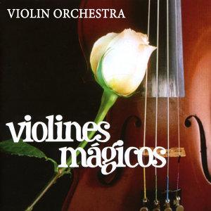 Violin Orchestra 歌手頭像
