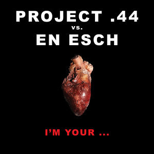 Project .44