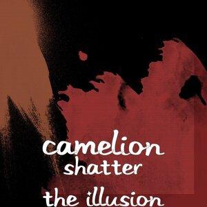 Camelion 歌手頭像