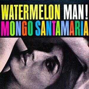 Mongo Santamaría 歌手頭像