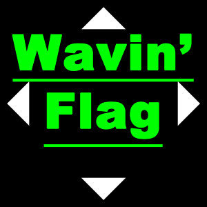 Wave Your Flag 歌手頭像
