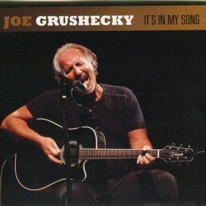 Joe Grushecky 歌手頭像