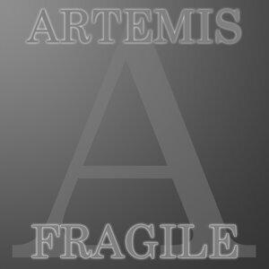 Artemis 歌手頭像