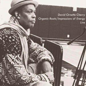 David Ornette Cherry