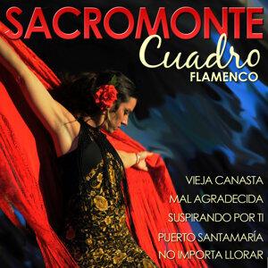 Cuadro Flamenco Sacromonte 歌手頭像
