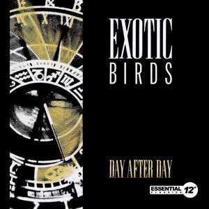 Exotic Birds 歌手頭像