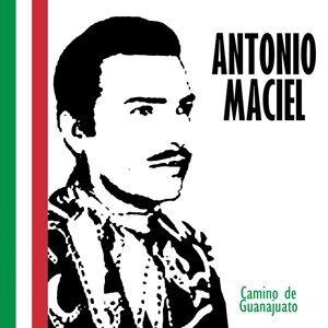 Antonio Maciel