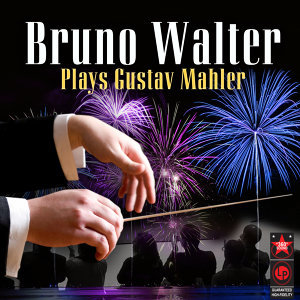 Bruno Walter & the New York Philharmonic Orchestra 歌手頭像