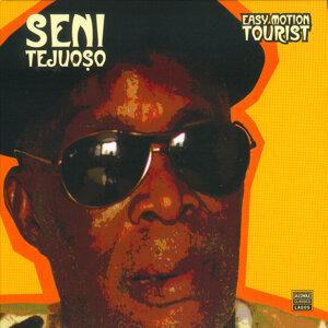 Seni Tejuoso 歌手頭像