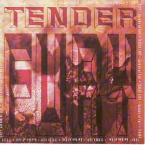Tender Fury 歌手頭像
