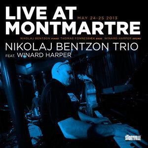 Signe Juhl & Nikolaj Bentzon Trio 歌手頭像