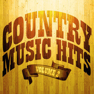 100 Country Music Hits 歌手頭像