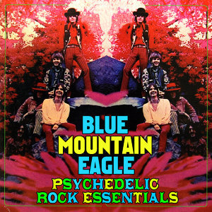 Blue Mountain Eagle