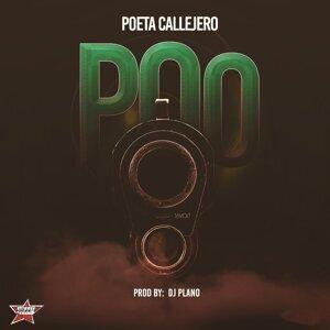 Poeta Callejero 歌手頭像