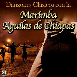 Marimba Aguilas De Chiapas 歌手頭像