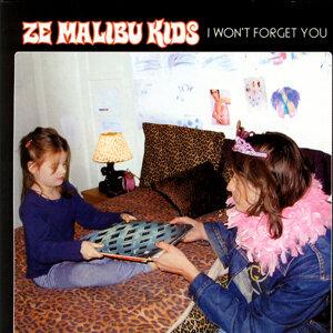 Ze Malibu Kids 歌手頭像