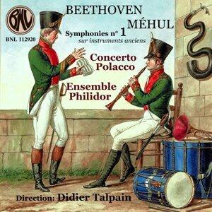 Concerto Polacco, Ensemble Philidor, Didier Talpain 歌手頭像