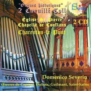 Domenico Severin 歌手頭像