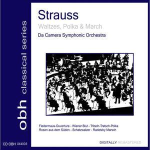 Da Camera Symphonic Orchestra