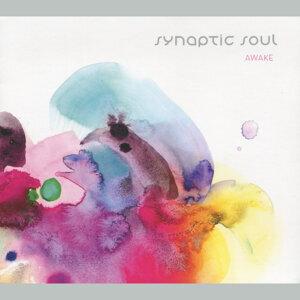 Synaptic Soul 歌手頭像