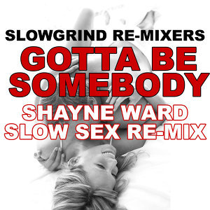 Slowgrind Re-Mixers 歌手頭像