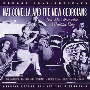 Nat Gonella And The New Georgians 歌手頭像