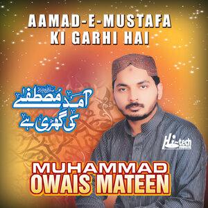 Muhammad Owais Mateen 歌手頭像