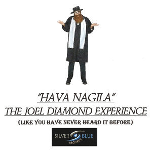 THE JOEL DIAMOND EXPERIENCE 歌手頭像