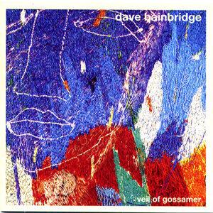 Dave Bainbridge 歌手頭像
