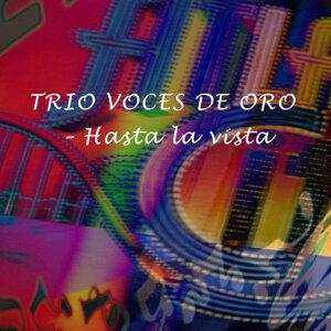 Trio Voces de Oro