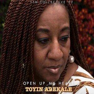 Toyin Adekale 歌手頭像