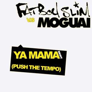 Fatboy Slim, Moguai 歌手頭像