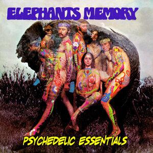 Elephants Memory