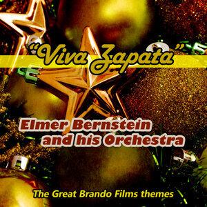 Elmer Bernstein & His Orchestra 歌手頭像