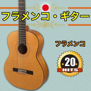 Various Flamenco guitarist 歌手頭像