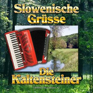 Die Kaltensteiner 歌手頭像