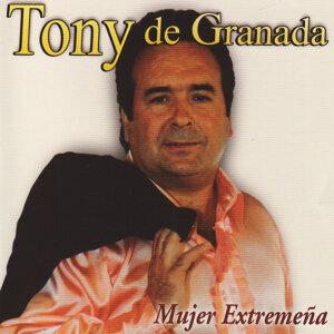 Tony de Granada 歌手頭像