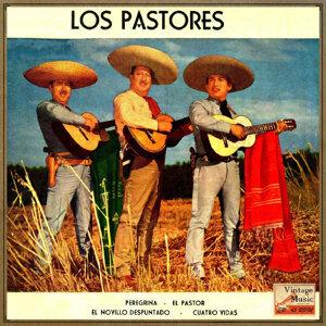 Trio Los Pastores 歌手頭像