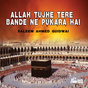 Saleem Ahmed Quidwai 歌手頭像